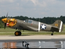 Curtiss P-40_3