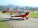 Piper L-4_1