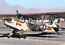 Piper L-4_6